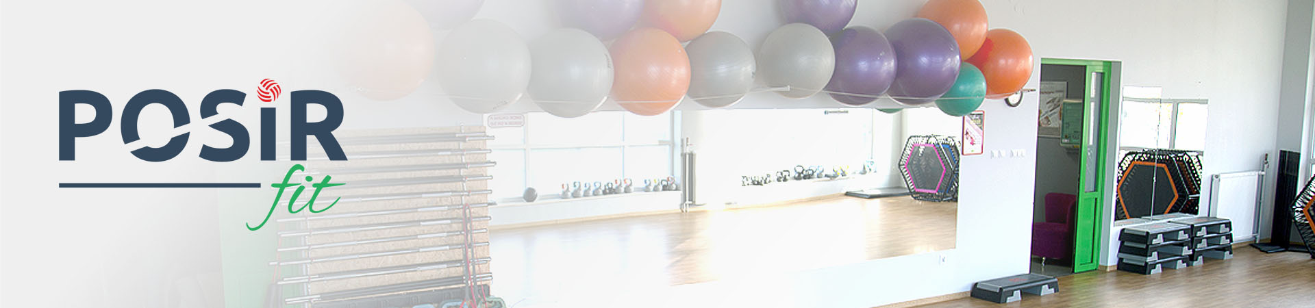 Banner-fit-3
